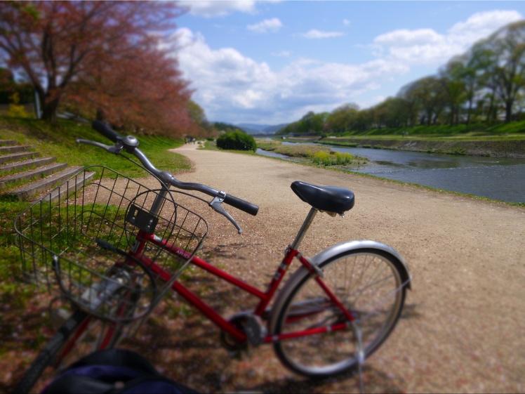 bike-river